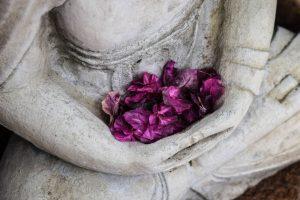 Buddha purple petals